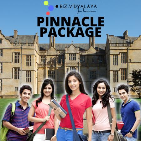 Biz-Vidyalaya Pinnacle Package
